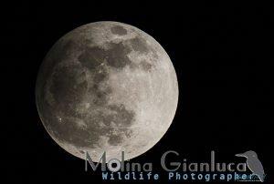 Eclissi di Luna 2013 elaborazione da RAW