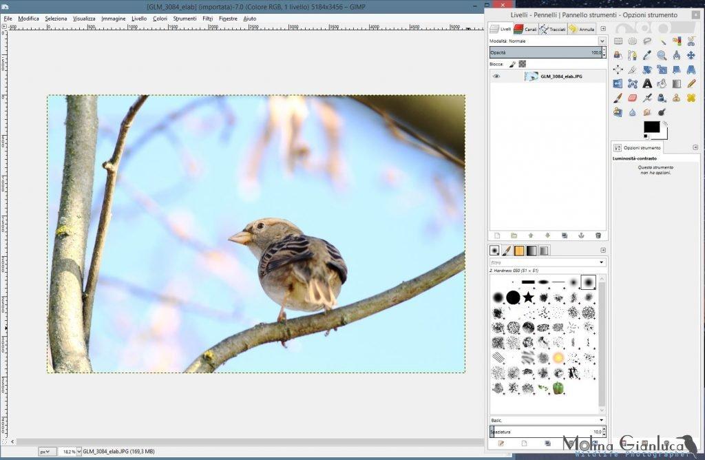 La schermata principale di GIMP