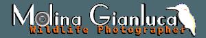 Fotonaturalistica.com