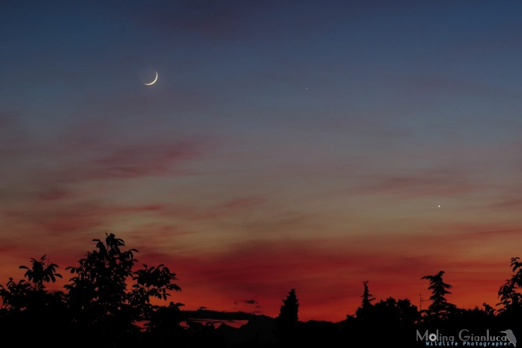 Congiunzione Luna - Mercurio - Venere del 24 Maggio 2020 elab rid